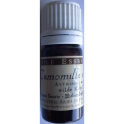 Camomille sauvage Orménie